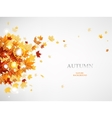 flying autumn leaves vector image vector image