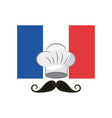 france flag classic culture vector image vector image