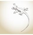 Lizard Hand drawn vector image vector image