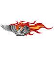 logo fire swan gradient vector image