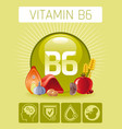 pyridoxine vitamin b6 rich food icons healthy vector image vector image