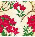 red rhododendron branch vintage vector image