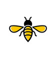 bee icon design template isolated vector image vector image