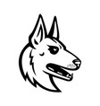 belgian malinois shepherd dog mascot vector image vector image
