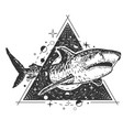geometric shark tattoo or t-shirt print vector image