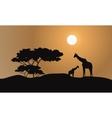 Giraffe silhouette in hills vector image vector image