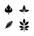 leaves simple related icons vector image