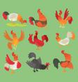 rooster cock chicken cartoon character vector image