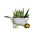 wheelbarrow and weapons ammunition in garden vector image