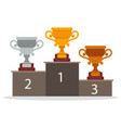 winner cup trophy team tournament match award vector image