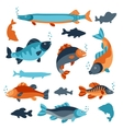 Set of various fish Objects for decoration vector image