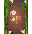 spa salon poster with stones and bamboo thai vector image