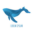 abstract whale logo deign vector image vector image