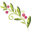 branch of cranberries with berries vector image vector image