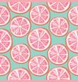 citrus grapefruit seamless pattern background vector image