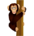 Funny chimpanzee cartoon vector image vector image