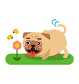 funny pug dog character walking in the park vector image vector image
