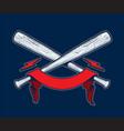 baseball bats with ribbon vector image