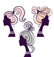 beautiful women silhouettes vector image vector image