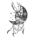 boho deer tattoo or t-shirt print design vector image vector image