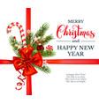 christmas holiday decor vector image vector image