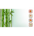 delicious japanese food maki rolls sushi rolls vector image vector image