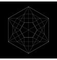 Harmonic sacred geometry Plato The vector image vector image