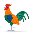 red junglefowl bird on a white background vector image vector image