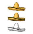 sombrero vintage color engraving vector image
