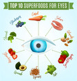 best food for eyes vector image vector image