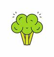 broccoli icon vector image vector image