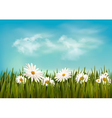 Grass with daisies under blue sky Retro background vector image vector image