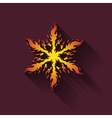 Icon fiery snowflakes vector image