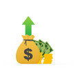 profit money or budget cash and rising graph vector image vector image