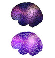 set of human brain with cosmic background cosmos vector image vector image