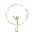 green tree trunk bush nature forest vector image