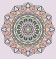 circle lace organic ornament mandala vector image