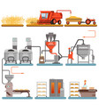 bread production process stages from wheat harvest vector image