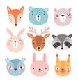 cute woodland characters bear fox raccoon vector image vector image