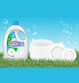 dishwashing liquid products ad 3d vector image vector image