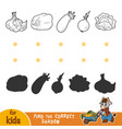 find correct shadow black and white vegetables vector image vector image