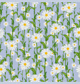 Seamless pattern from field chamomiles
