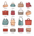 set with fashion bags vector image vector image