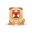 funny pug dog character sitting and holding bone vector image