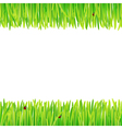background of spring grass vector image vector image