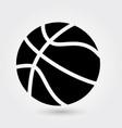 basketball icon sports ball icon sports ball vector image