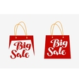 Big Sale logo Inscription written on shopping bag vector image vector image