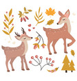 cute fawn in autumn forest set objects vector image vector image