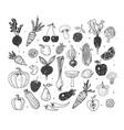 doodle fruits and vegetables sketch vector image