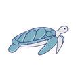 hand drawn sea turtle icon vector image